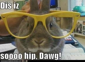 Dis iz   soooo hip, Dawg!