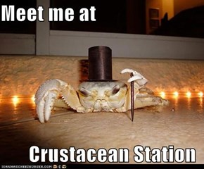 Meet me at         Crustacean Station