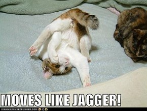 MOVES LIKE JAGGER!