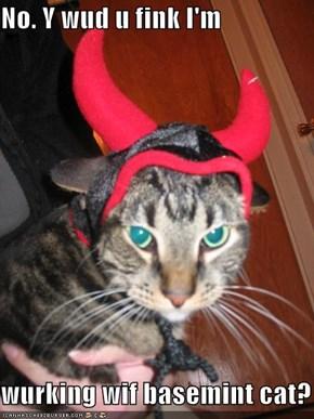 No. Y wud u fink I'm   wurking wif basemint cat?