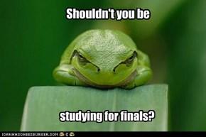Killjoy conscience frog ruins your LOL