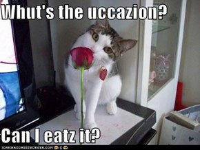 Whut's the uccazion?