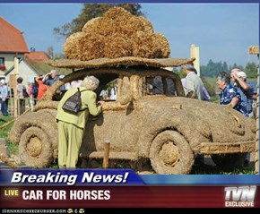 Breaking News! - CAR FOR HORSES
