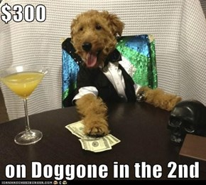 $300   on Doggone in the 2nd