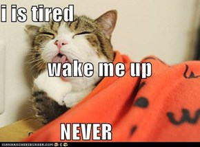 i is tired wake me up NEVER