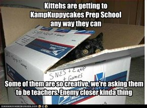 Kittehs are getting to KampKuppycakes Prep School any way they can