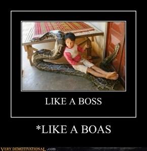 *LIKE A BOAS