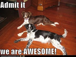 Admit it  we are AWESOME!