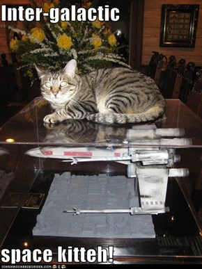 Inter-galactic   space kitteh!