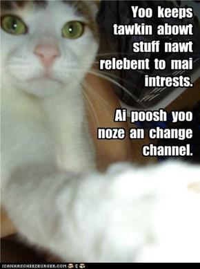 Yoo habs to yooz da remote, kitteh.