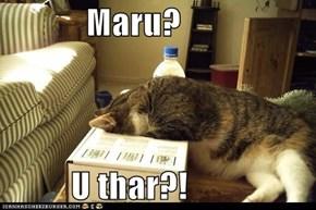 Maru?