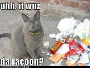uhh, it wuz  da racoon?
