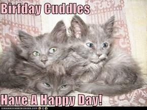 Birfday Cuddles  Have A Happy Day!