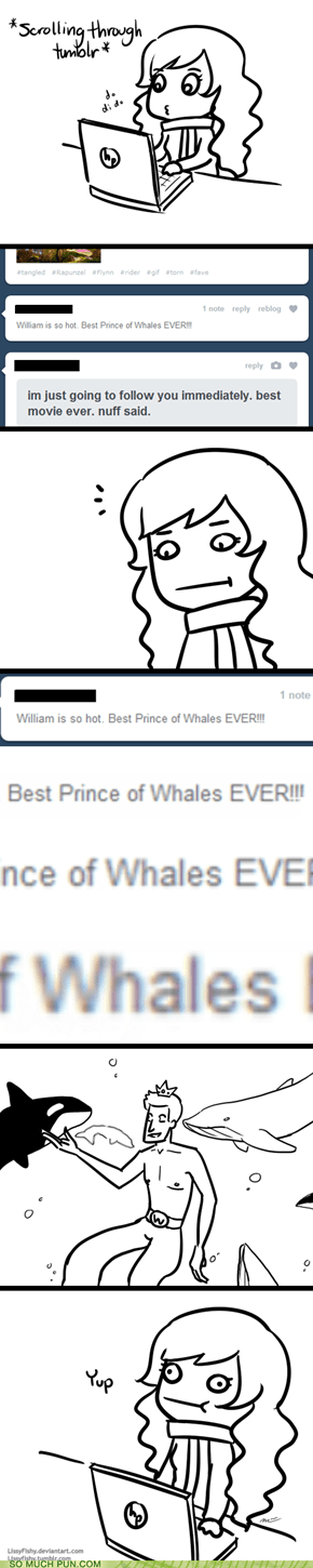 This is Tumblr in a Nutshell