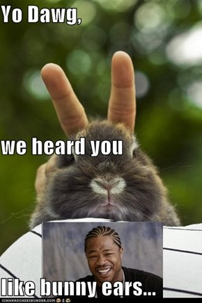 Yo Dawg, we heard you like bunny ears...