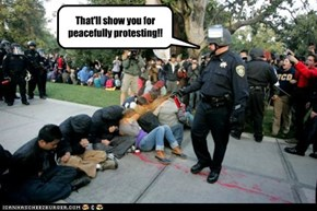 That'll show you for peacefully protesting!!