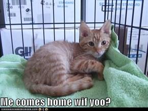 Me comes home wif yoo?