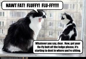 Flu-FFY!