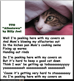"""Peeking Cat"" (TTO ""Allentown"" by Billy Joel)"