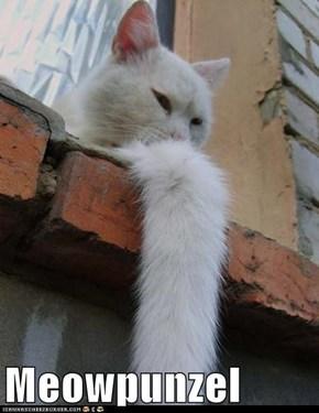 Meowpunzel
