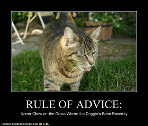 RULE OF ADVICE: