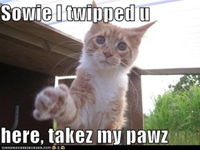 Sowie I twipped u  here, takez my pawz