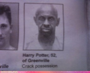 You're a Felon Now, Harry!