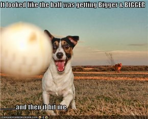 It looked like the ball was getting Bigger & BIGGER  ...........and then it hit me.