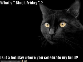 "What's "" Black Friday "" ?   Is it a holiday where you celebrate my kind?"