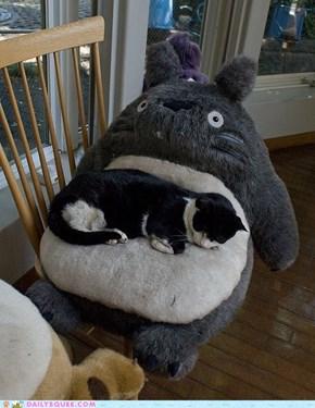 Acting Like Animals: My Neighbor Totoro