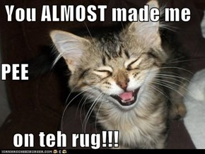 You ALMOST made me  PEE    on teh rug!!!