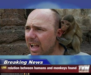 Breaking News - relation between humans and monkeys found