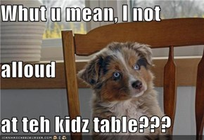 Whut u mean, I not alloud at teh kidz table???