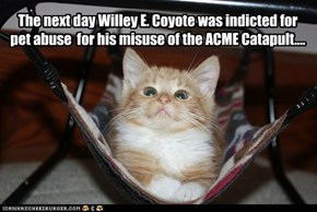 The next day Willey E. Coyote was indicted for pet abuse  for his misuse of the ACME Catapult....