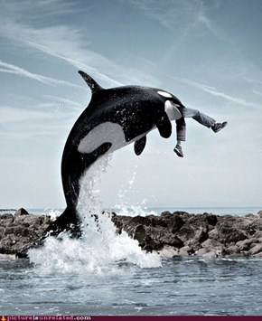 Free Willy: Deleted Scene