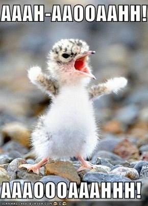 AAAH-AAOOAAHH!!!  AAAOOOAAAHHH!