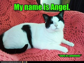 My name is Angel.