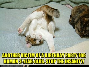 ANOTHER VICTIM OF A BIRTHDAY PARTY FOR HUMAN 3-YEAR-OLDS. STOP THE INSANITY!