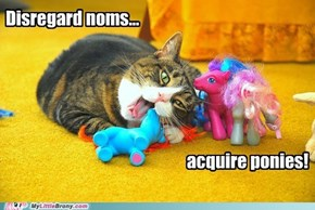 Disregard noms... Acquire ponies!