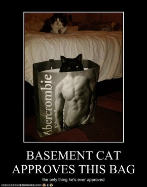BASEMENT CAT APPROVES THIS BAG