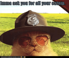 Imma ask you for all your catnip.