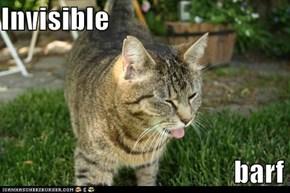 Invisible                                           barf