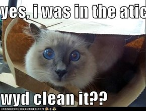 yes, i was in the atic.  wyd clean it??