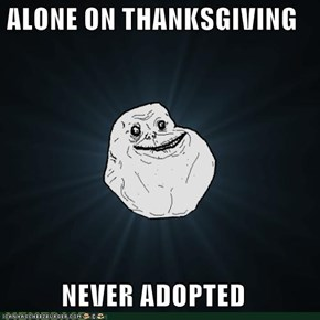 ALONE ON THANKSGIVING  NEVER ADOPTED
