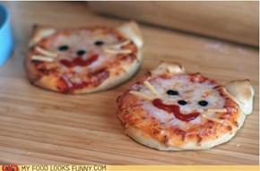 Funny Cat Pizza