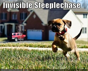 Invisible Steeplechase