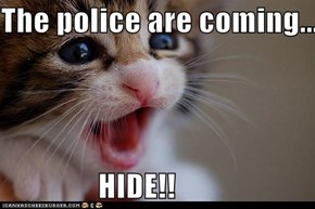 The police are coming...  HIDE!!