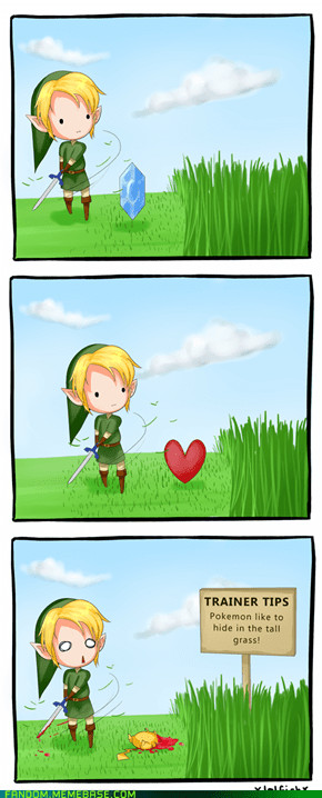 Link Would Make a Terrible Trainer