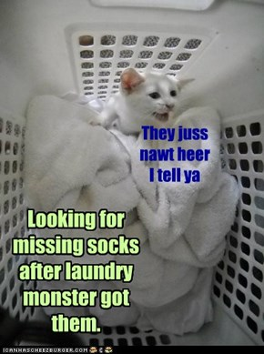 Looking for missing socks after laundry monster got them.