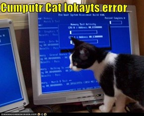 Cumputr Cat lokayts error
